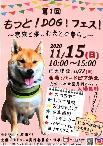 2011125.jpg