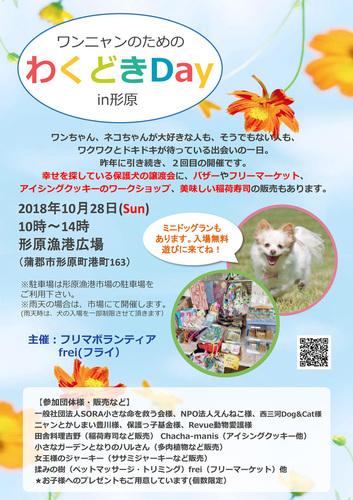 2018わくどきポスター.jpg